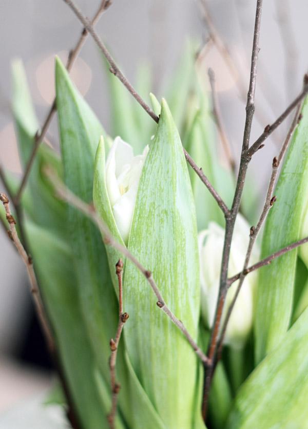 Våren in 1