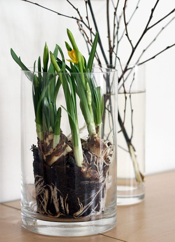 Våren in 2