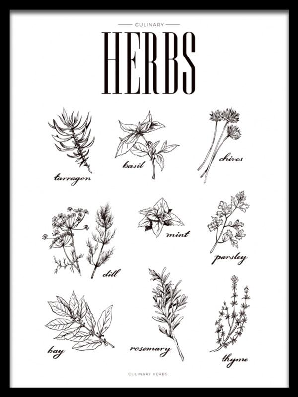 boek over hyacintglazen